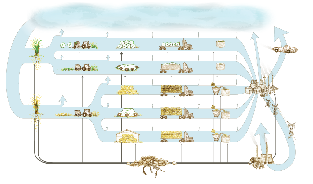 Diagram of biomass and fossil carbon flows during switchgrass ethanol production.  Illustration by Jennifer Purnell.